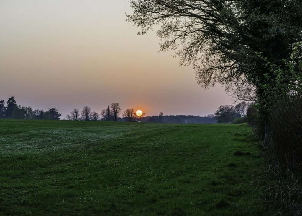 sunsetting across a field in sonning common oxfordshire