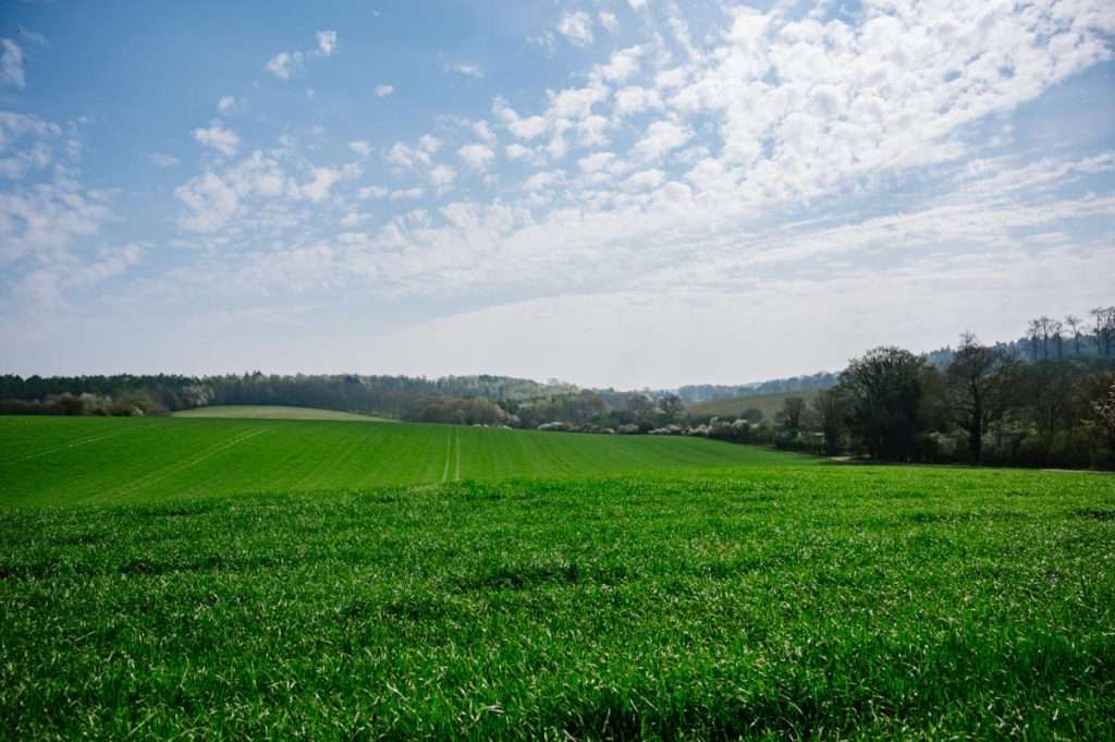 photo of Open fields and blue sky